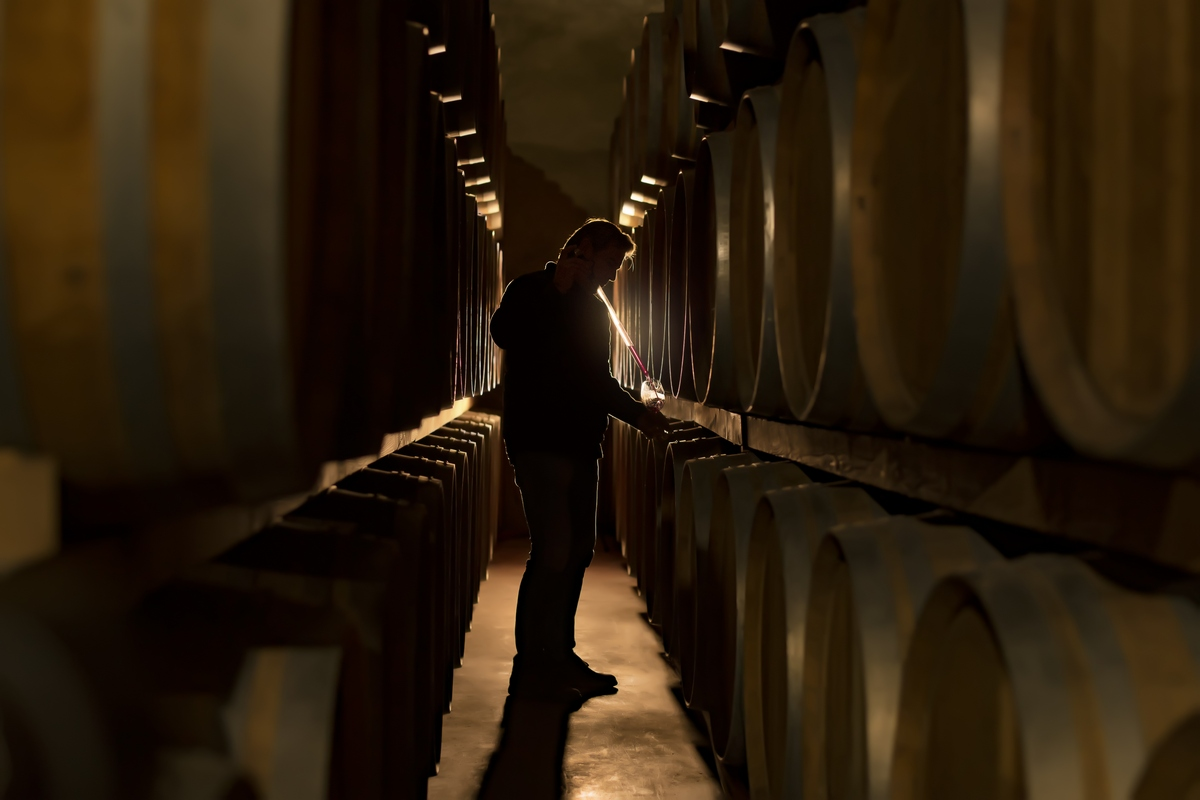 Extracción de vino de barril en bodegas Casa Castillo