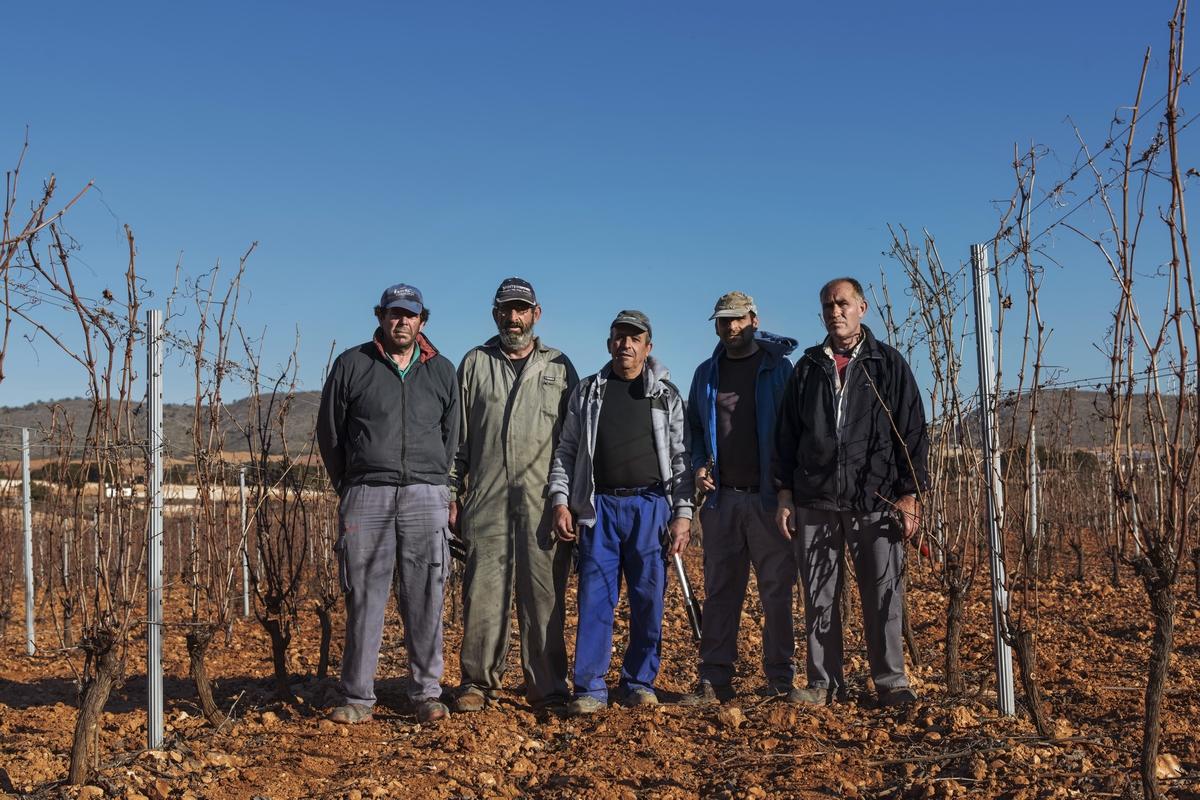 Trabajadores en los viñedos de Finca Casa Castillo