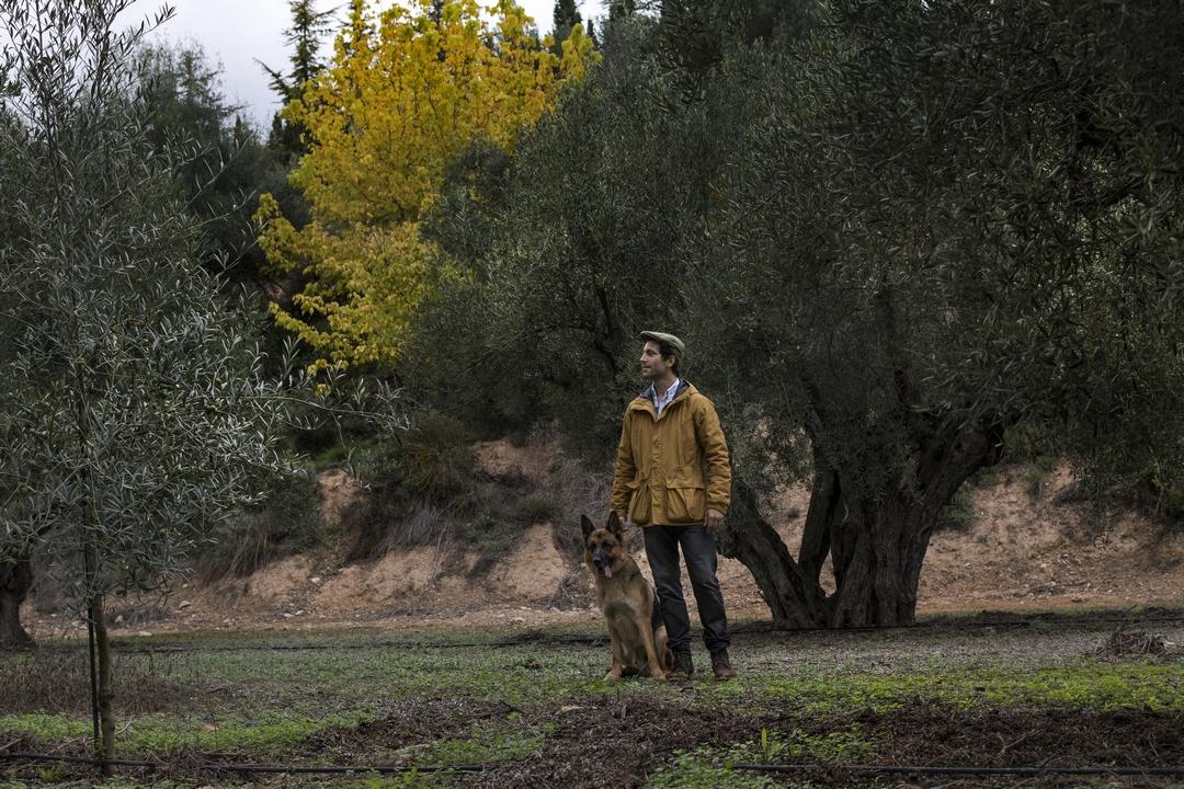 Jorge Petit entre los olivos milenarios de la finca Masía el Altet acompañado de su perro, Rio.
